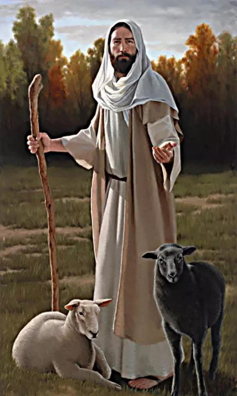 Jesus With Goat Animal Full Hd Wallpapers Download