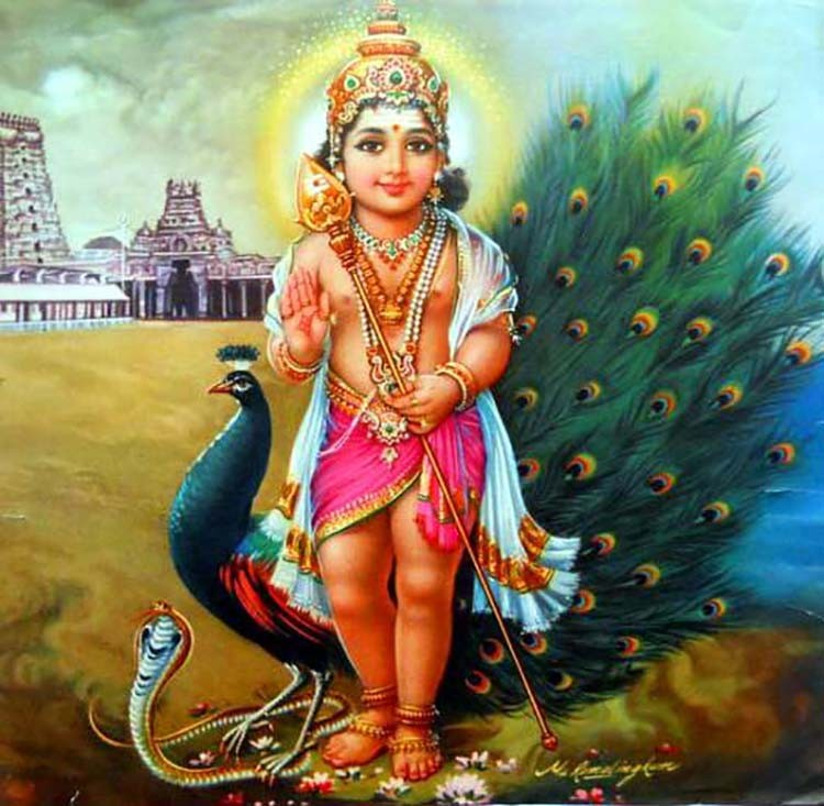 Lord Murugan Baby Child Images Photo Download
