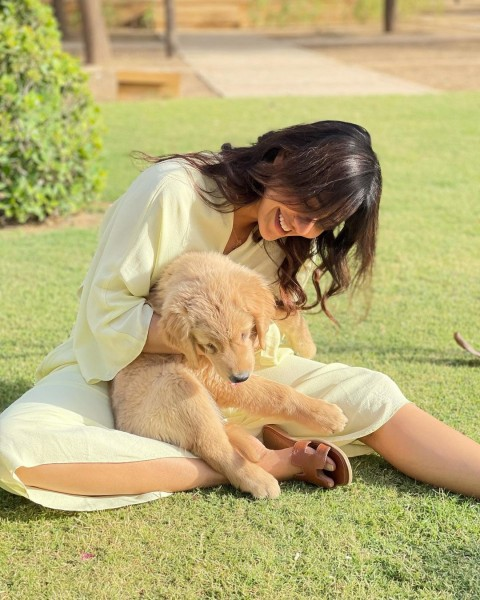 Neha Sharma Latest New Wallpapers Images Full HD